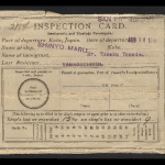 Inspection card (immigrants and steerage passengers)