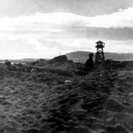 Japanese Americans digging for shells